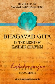 Bhagavad Gita, in the Light of Kashmir Shaivism - EBOOK