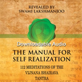 Manual for Self Realization, 112 Meditations of the Vijnana Bhairava Tantra - FREE AUDIO