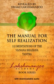 Manual for Self Realization: 112 Meditations of the Vijnana Bhairava Tantra - SOFT COVER