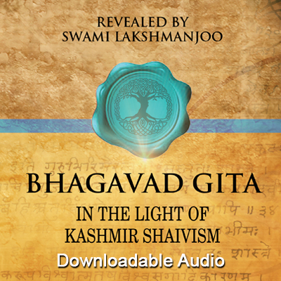 Bhagavad gita in the light of kashmir shaivism free audio bhagavad gita in the light of kashmir shaivism free audio fandeluxe Image collections